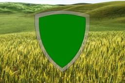 Concime fogliare - Protegge le piante?
